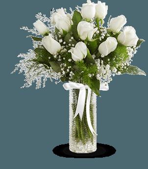 Beyaz Gülün Zarafeti şeffaf vazo