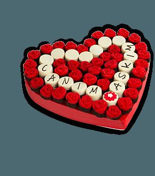 Canım Aşkım Kek Buketi