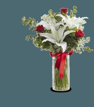 Saklı Düşler Güller ve Lilyumlar